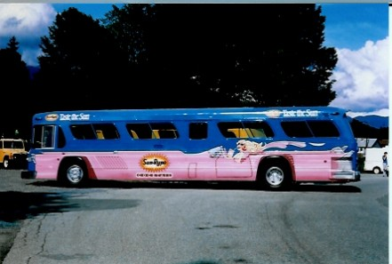vehicle lettering - Buses